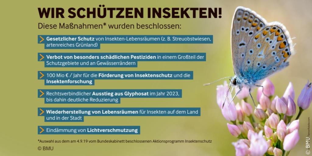 Aktionsprogramm Insektenschutz Lichtverschmutzung Bundesumweltministerium